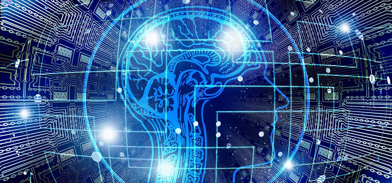 Táplálékkiegészítők, amelyek elősegíthetik az agy működését